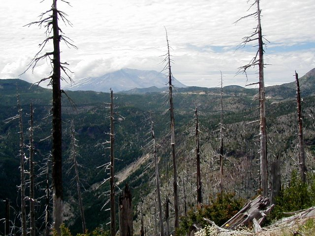 Mount St. Helens in 2004