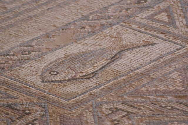Mosaic at Kourion, Cyprus