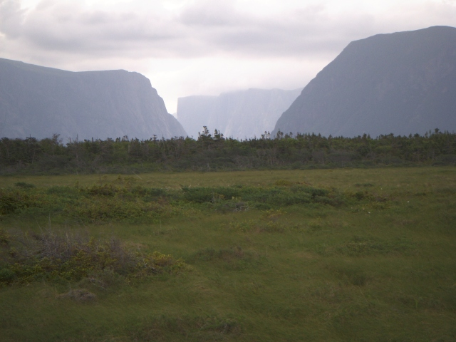 tesserology gros morne